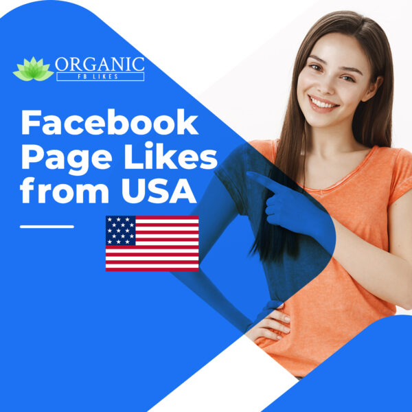 Facebook USA Page Likes
